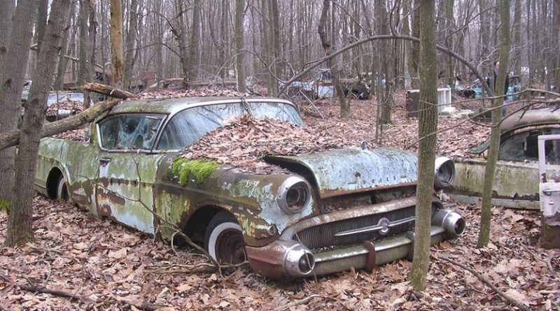 Don't Head Out To the Junkyard Without These Things